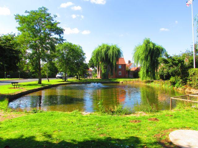 Finningely pond